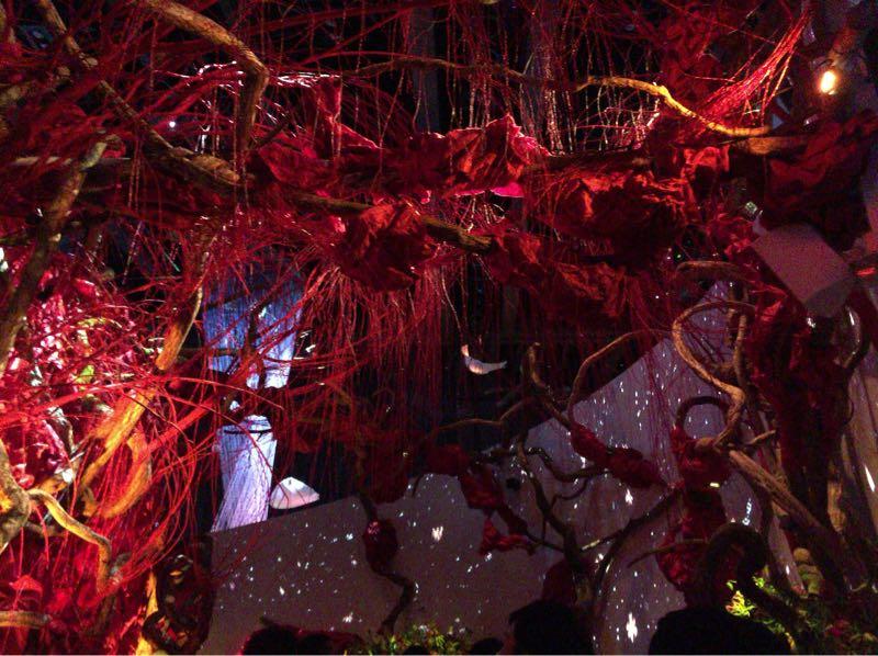 赤くパワーを感じる植物の繭