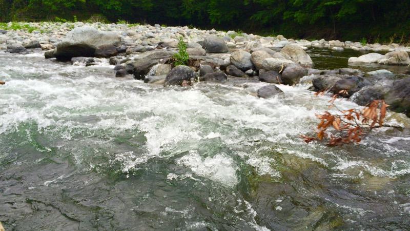 急流ポイント大川瀬