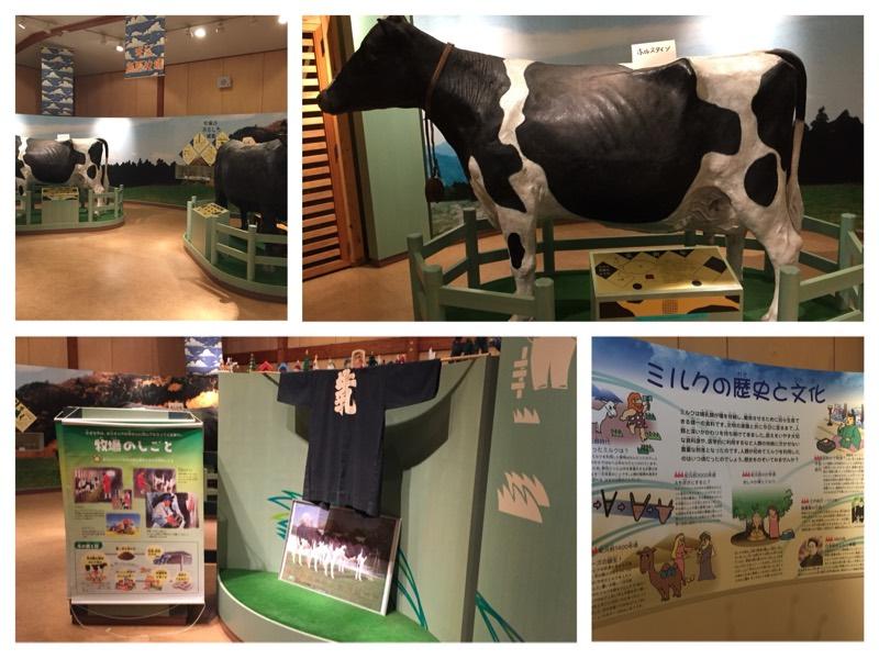 牛の模型や乳搾りのパネル