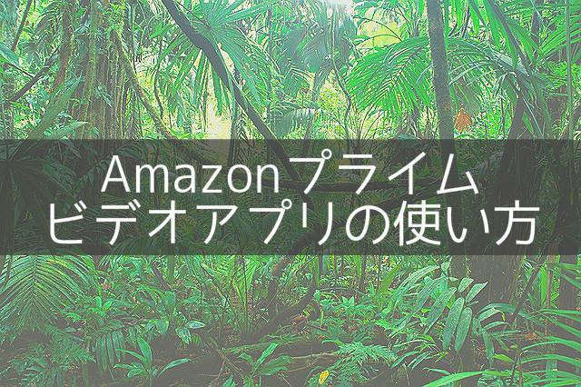 amazonプライムビデオアイキャッチ