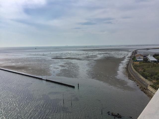 中の島歩道橋からの景色