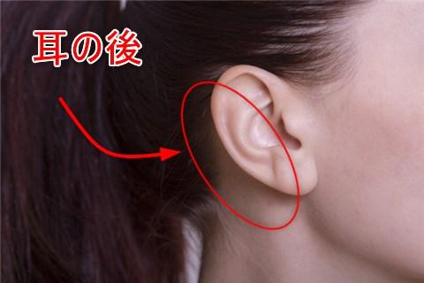 耳のうらではなくて、耳の付け根の後ろ辺り